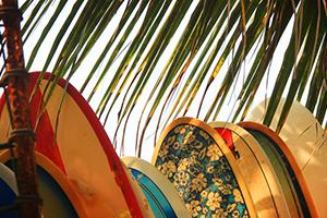 Board-Rental-Fuerteventura1