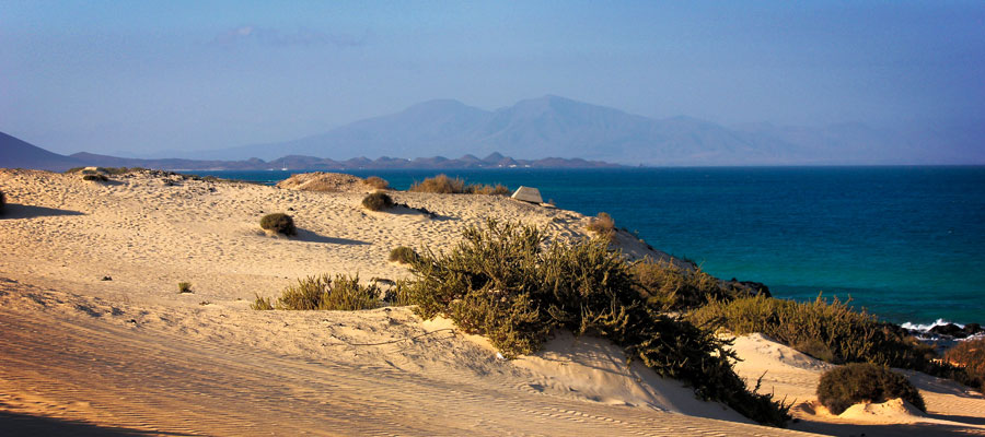 A highlight in the north of the island: the dunes of Corralejo