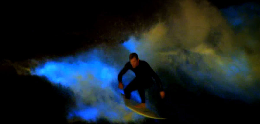 Surfing in the glow of the ocean in California