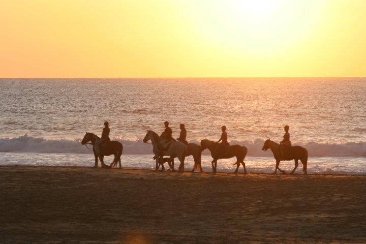 Horseback riding on Fuerteventura