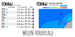 Wellen-Vorhersage