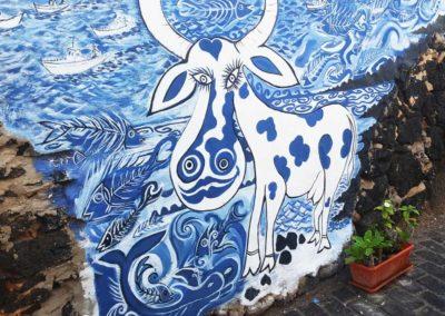 vaca-azul-fuerteventura